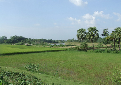 Bangladesh photo Gallery,Bangladesh photo,Bangladesh nature